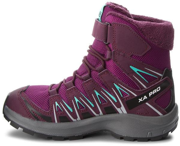 Salomon XA Pro 3D Winter TS CSWP J Dark Purple/Potent Purple/Atlantis