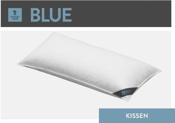 Spessarttraum Federkissen Blue 80x80cm