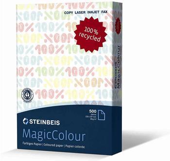 Steinbeis Vision MagicColour (80255A80S)
