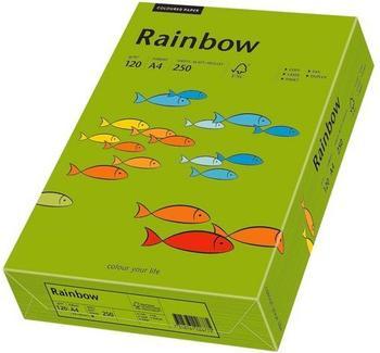 Papyrus Multifunktionspapier Rainbow, A4, 120g/qm, intensivgrün (88042678)