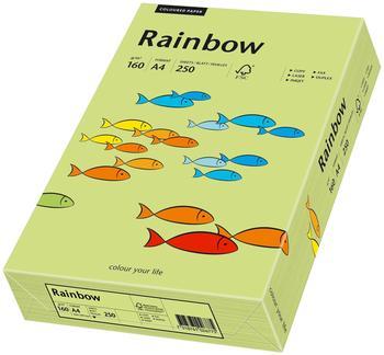 Papyrus Rainbow (88042615)