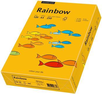 Papyrus Multifunktionspapier Rainbow, A4, 120g/qm, mittelorange (88042414)