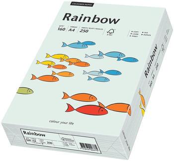 Papyrus Rainbow (88042703)