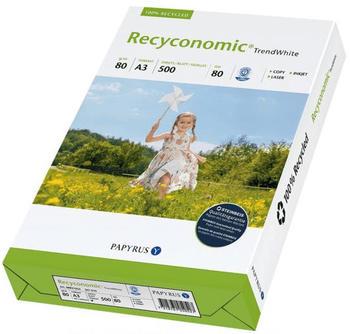 Papyrus Recyconomic Trend White (88031821)