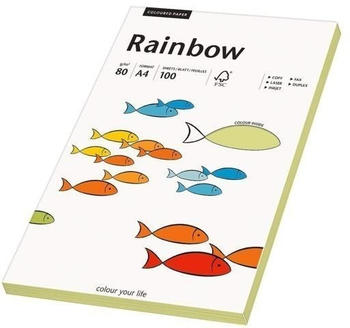 Rainbow Kopierpapier COLOURED PAPER leuchtend grün A4 80 g/qm