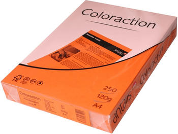 Antalis Coloraction (838A 120S 15)