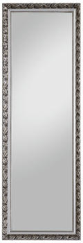 Spiegelprofi Pius 50x150cm silber (H0035015)