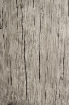 asa-table-tops-platzsets-6er-set-pinie-grau-6-stueck-a-30-5-x-45-7-cm