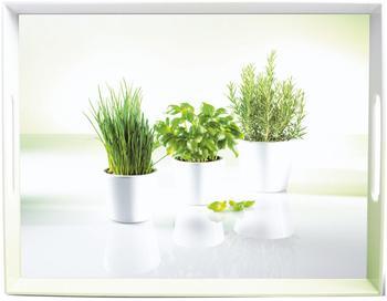 Emsa Classic Tablett Herbs 40 x 31 cm