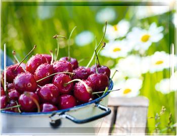 Emsa Classic Tablett 50 x 37 cm Cherries