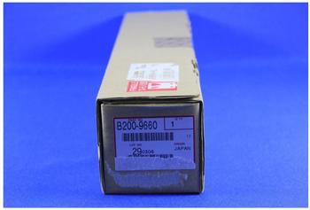 Ricoh B2009660