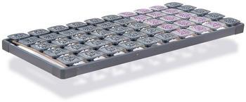 Tempur Premium Flex 500 80x200 cm
