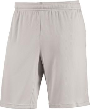 Adidas 4KRFT Climachill Shorts chalk Pearl