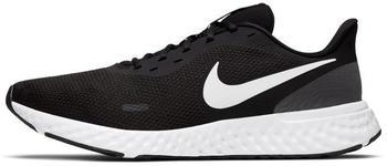 Nike Revolution 5 FlyEase Herren schwarz (BQ3204-002)
