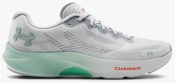 Under Armour UA Charged Pulse Damen grau (3023024-103)