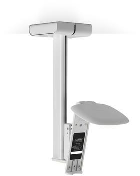 Flexson Sonos One/Sonos Play:1 Deckenhalter
