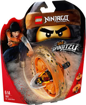 LEGO Ninjago Spinjitzu-Meister Cole (70637)