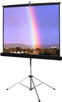 WS-Spalluto Picture King 178x178