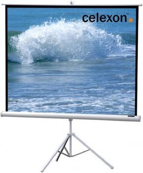 Celexon Stativ Economy 244 x 244 White Edition