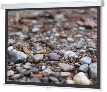 WS-Spalluto ProScreen Rollo 200x200 Datalux