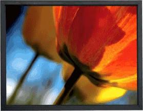 WS-Spalluto Home Screen 16:9 200x112