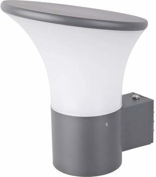 RENKFORCE Außenwandleuchte Energiesparlampe E27 46 W Rivoli 1283500 Dunkel-Grau