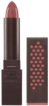 burts-bees-lipstick-blush-basin