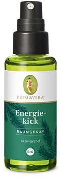 Primavera Life Energiekick Raumspray Bio (50ml)