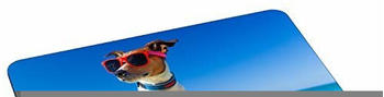 pedea-design-mauspad-surfer-dog