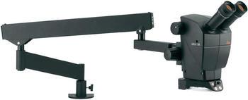 Leica Microsystems Stereomikroskop Binokular 30 x A60 F
