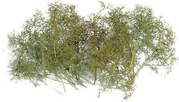 busch-model-naturbaeume-6801