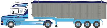 Busch Scania LKW (200124660)