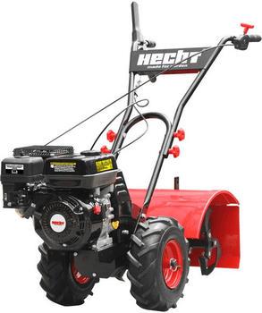 hecht-750