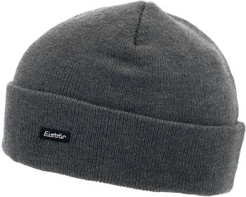 eisbaer-skater-grau