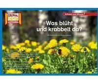 Hase und Igel Verlag GmbH Kamishibai: Was blüht und krabbelt da?