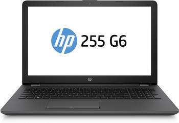 Hewlett-Packard HP 255 G6 (2UC42ES)