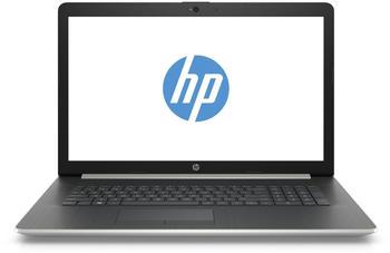 """HP 17-ca0206ng Notebook 43,9 (17,3"""") AMD Ryzen 5, 128 GB + 1 TB, 8 GB silberfarben"""