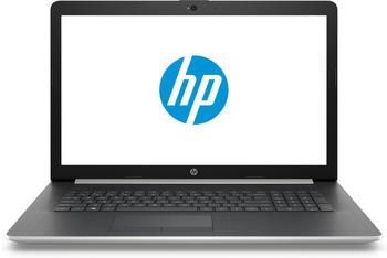 HP 17-by0617ng Notebook i5-8250U 8GB 128GB 1TB AMD Radeon 520 2GB 17,3 FHD (Grau, Silber)