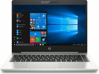 HP ProBook 455 G6 (6UK72ES)