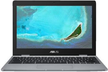 Asus Chromebook C223NA-GJ0049
