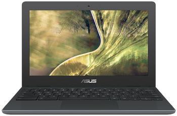 Asus Chromebook C204MA-GJ0114