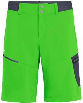 salewa-pedroc-cargo-2-dst-shorts-men-pale-frog