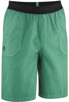 edelrid-legacy-iii-shorts-pine-green