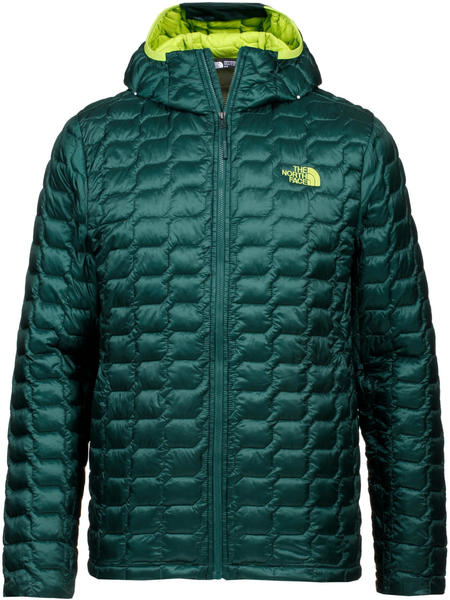 The North Face Men's Thermoball Hoodie Jacket botanical garden green