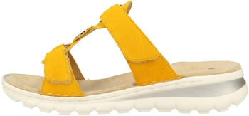Ara Tampa (47210) yellow