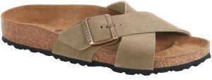 Birkenstock Siena Suede Leather taupe