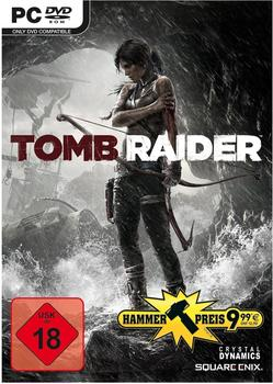 Square Enix Tomb Raider (PC)