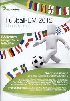 dtp-entertainment-fussball-em-2012-druck-studio