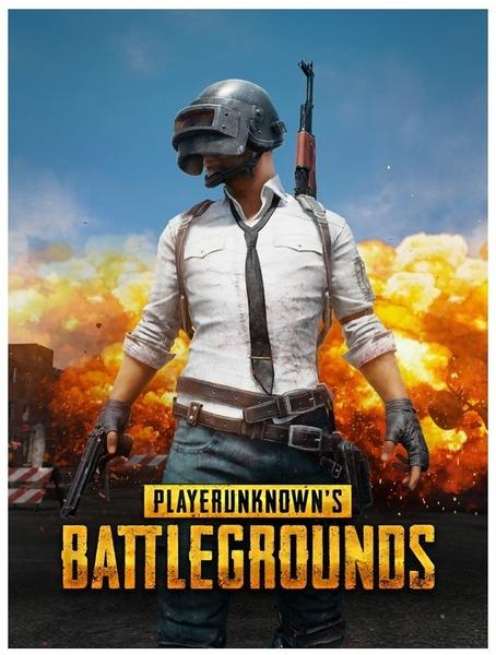 Bluehole Playerunknowns Battlegrounds (Download) (PC)