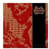 TARGET RECORDS Black Swamp Water Awakening - Musik